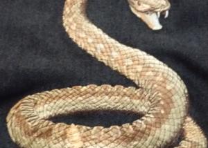 Snake Embiodery